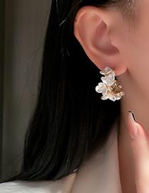 Fashion Color Pearl Flower Earrings