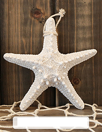 Fashion White Starfish Shape Decorated Hook Ornaments(big)