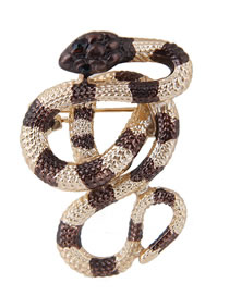 Simple Brown+gold Color Snake Shape Decorated Brooch