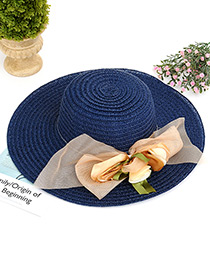 Fashion Navy Bowknot Shape Decorated Hat