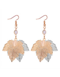 Simple Gold Color Leaf Shape Decorated Hollow Out Earrings