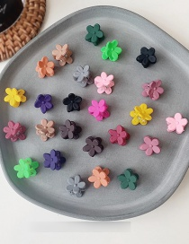 Fashion Small - Mixed Color 20 Packs Flower Grab Set