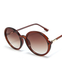 Fashion Tea Frame Tea Slice Oval Sunglasses