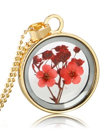 Fashion Gold + Red Background + Red Flower Natural Forget-me-not Dried Flower Necklace
