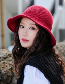 Fashion Red Wine Knitted Wool Cap