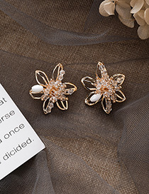 Fashion Gold 925 Silver Needle Crystal Openwork Stereo Flower Earrings