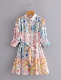 Fashion Photo Color Chiffon Printed Mid-sleeve Lace-up Dress