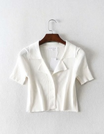 Fashion White Lapel Short Sleeve Knit T-shirt