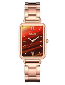 Fashion Brown Rectangular Dial Steel Band Waterproof Quartz Ladies Watch