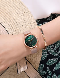 Fashion Green Quartz Ladies Watch With Mesh Scale Marble