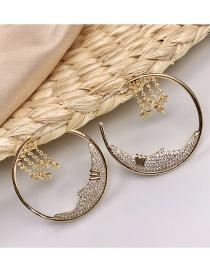 Fashion Girls Brown Earrings S925 Silver Geometric Brown Earrings