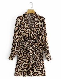 Fashion Color Leopard Print Waist Tie Dress