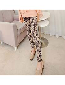 Pretty Picture Color Fit Slim Elastic Design Cotton Blends Trousers
