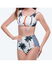 Sexy Multicolor Palm Trees&stripe Pattern Decorated High Waist Design  Polyester Sexy Bikini