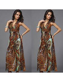 Bohemia Coffee Peacock Pattern Decorated V Neckline Sleeveless Long Dress