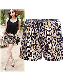 Trendy Leopard Leopard Grain Pattern Decorated Simple Design Shorts