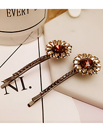 Vintage Purple Flower Decorated Color Matching Simple Hair Pin (2pcs)