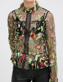 Fashion Multi-color Embroidered Fabric Decorated Perspective Long-sleeved Shirt